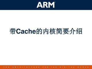 带 Cache 的内核简要介绍