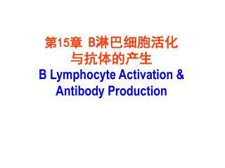 第 15 章  B 淋巴细胞活化 与抗体的产生 B Lymphocyte Activation & Antibody Production
