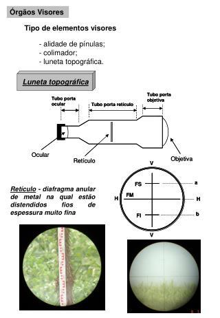 Órgãos Visores