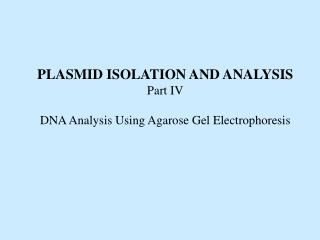 PLASMID ISOLATION AND ANALYSIS Part IV DNA Analysis Using Agarose Gel Electrophoresis