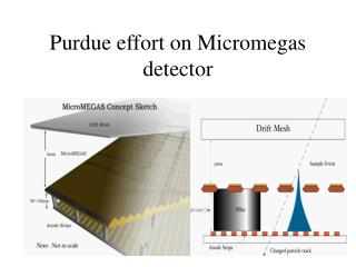 Purdue effort on Micromegas detector