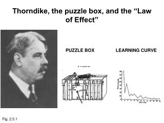 "Thorndike, the puzzle box, and the ""Law of Effect"""
