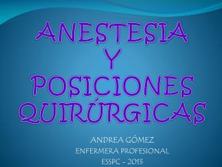 ANDREA GÓMEZ ENFERMERA PROFESIONAL ESSPC - 2013