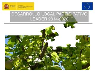 DESARROLLO LOCAL PARTICIPATIVO LEADER 2014-2020