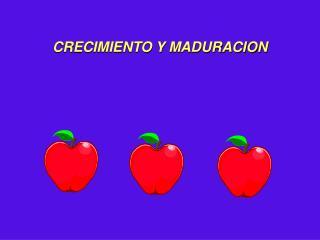 CRECIMIENTO Y MADURACION