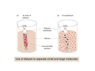 Use of dialysis to separate small and large molecules
