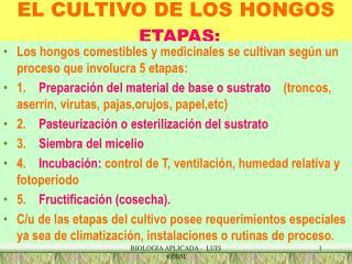 EL CULTIVO DE LOS HONGOS ETAPAS: