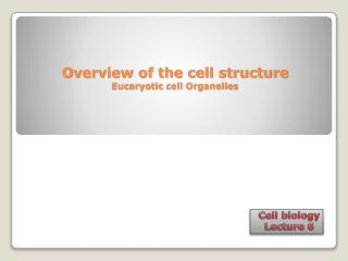 Overview of the cell structure Eucaryotic  cell Organelles