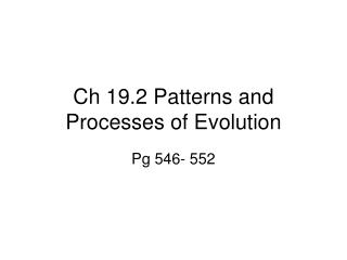 Ch 19.2 Patterns and Processes of Evolution