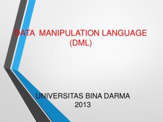 UNIVERSITAS BINA DARMA 2013