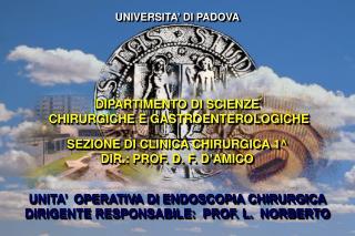 POLESE L. ANGRIMAN  I. SCARPA  M. RUFFOLO  C. PAGANO D.  ERROI  F. FREGO  M.  D'AMICO  D. F.