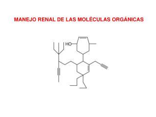 MANEJO RENAL DE LAS MOLÉCULAS ORGÁNICAS