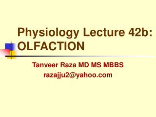 Physiology Lecture 42b: OLFACTION