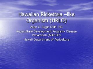 Hawaiian Rickettsia  like Organism HRLO