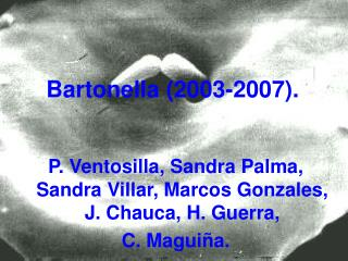 Bartonella (2003-2007).
