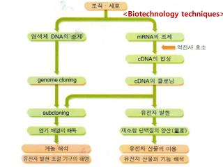 <Biotechnology techniques>