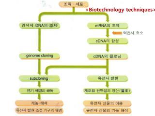 <Biotechnology techniques>