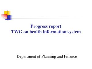 Progress report  TWG on health information system