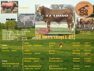 RAZA------------------------SIMBRAH FECHA DE NAC-------------14/MAR/05