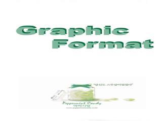 그래픽 포맷의 정의