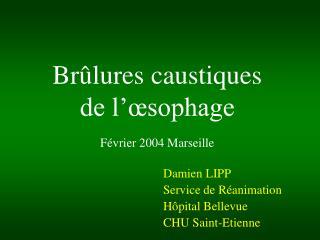 Br lures caustiques  de l  sophage  F vrier 2004 Marseille