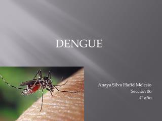 DENGUE Anaya Silva Hafid Melesio Sección 06 4º año