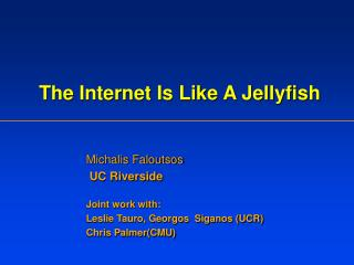 The Internet Is Like A Jellyfish