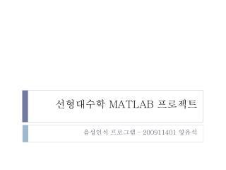 선형대수학  MATLAB  프로젝트