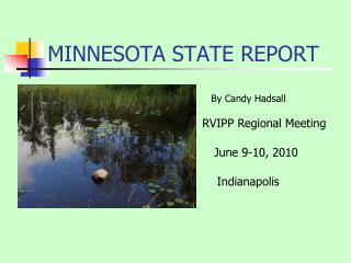 MINNESOTA STATE REPORT