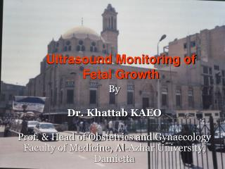 Ultrasound Monitoring of Fetal Growth