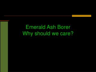 Emerald Ash Borer Why should we care?