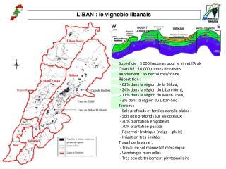 LIBAN : le vignoble libanais