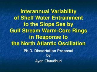 Ph D Dissertation