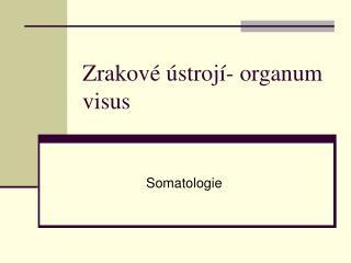 Zrakové ústrojí- organum visus