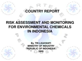 By. TRI LIGAYANTI MINISTRY OF INDUSTRY REPUBLIC OF INDONESIA 2005