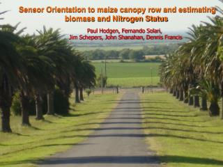 Sensor Orientation to maize canopy row and estimating biomass and Nitrogen Status