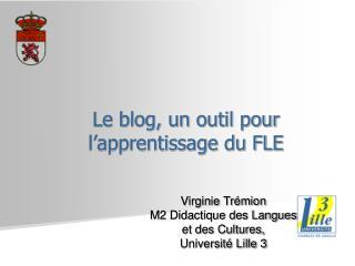 Le blog, un outil pour l apprentissage du FLE