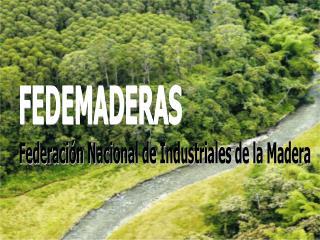 LA INDUSTRIA FORESTAL EN COLOMBIA