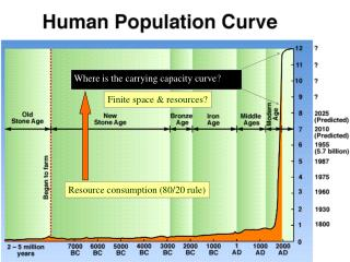 Where is the carrying capacity curve ?