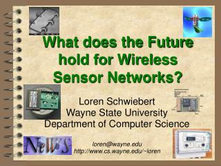 Wireless Sensor Network Future Talk