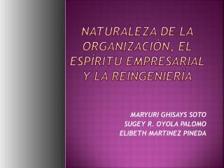 Naturaleza de la organización, el espíritu empresarial y la reingeniería
