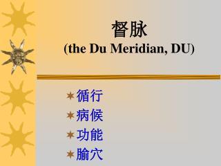 督脉 (the Du Meridian, DU)
