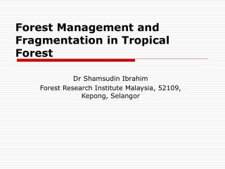 Forest Management and Fragmentation in Tropical Forest