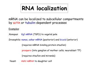RNA localization