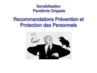 Sensibilisation  Pand mie Grippale  Recommandations Pr vention et  Protection des Personnels