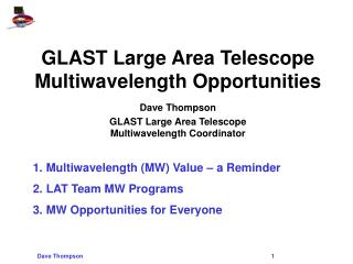 GLAST Large Area Telescope Multiwavelength Opportunities