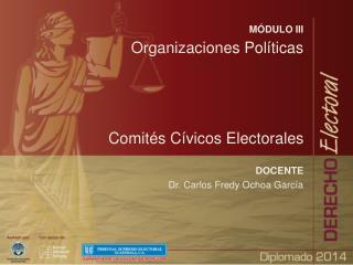 MÓDULO III Organizaciones Políticas Comités Cívicos Electorales DOCENTE