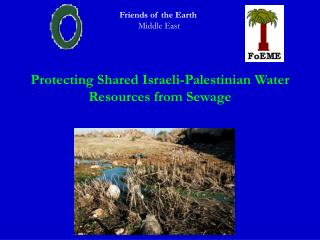 Protecting Shared Israeli-Palestinian Water Resources from Sewage