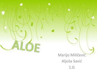Marijo Miličević Aljoša Savić  1.G