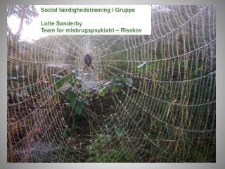 Social f rdighedstr ning i gruppe  v.  Misbrugspsykologernes  rsm de Odense 1. og 2. oktober 2009